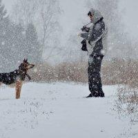 Фотограф и собака :: Валерий Талашов