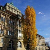 Цюрих Швейцария. Университет. :: Murat Bukaev