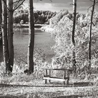 Место отдыха. :: Андрий Майковский