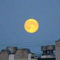Луна над крышей. :: Борис Митрохин