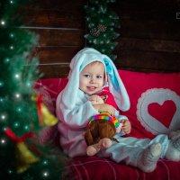 Ещё один зайка! :: Ольга Егорова