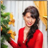 Новый год :: Леонид