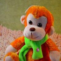Рыжая обезьяна :: Ростислав