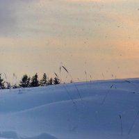 И падал снег.... :: Павлова Татьяна Павлова