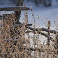 зима дома :: Екатерина