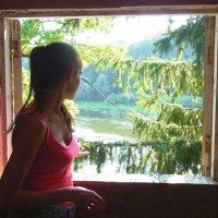 окно в природу :: Леонид Натапов