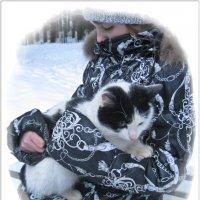 Кошке холодно зимой - я возьму её домой... :: muh5257