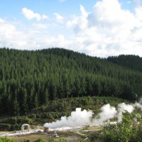 Долина гейзеров в Новой Зеландии :: Антонина