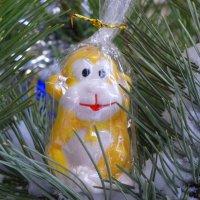 Символичный подарок... :: Тамара (st.tamara)