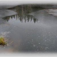 Зеркало природы... :: Александр Филатов
