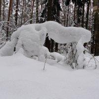Снежное чудище :: Александр Прокудин