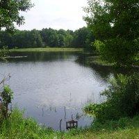 Филинское озеро :: Виктор Мухин