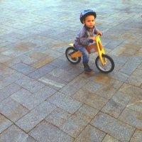 На экологическом велосипеде по современному газону.. :: Alexey YakovLev