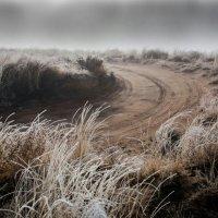 Морозное :: Евгений Сандер