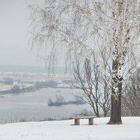 Село Константиново, вид на Оку :: Валерий Толмачев