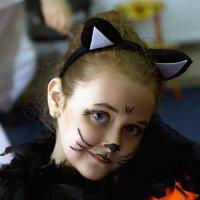 Котёнок :: Владимир Тарасов