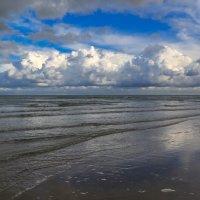 Берег моря :: Марат Макс