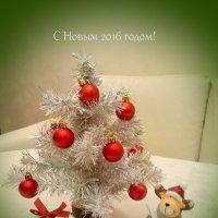 С Новым 2016 годом, дорогие друзья! :: Валентина (Panitina) Фролова