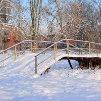 Мостик в сельском,зимнем парке. :: Любовь