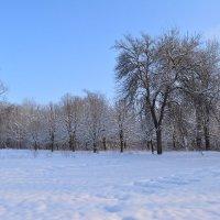 Зимние,сельские зарисовки-1 :: Любовь