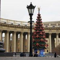 Улка у Казанского собора :: Елена Павлова (Смолова)