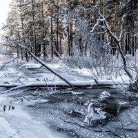 frozen river :: Dmitry Ozersky