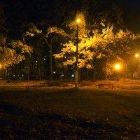 осенний вечер :: георгий  петькун