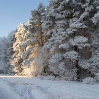 Зима :: Александр Филатов