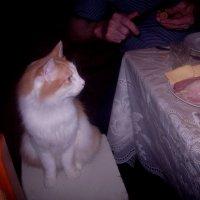 Как вкусно пахнет со стола! :: Tarka