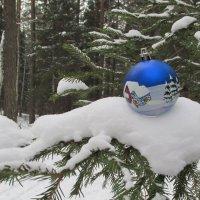 Новый год :: Олег  Царёв