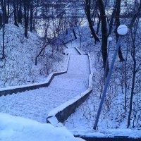 Лестница к Оке. :: Борис Митрохин