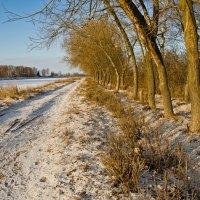 Январская набережная канала имени Москвы. :: Виктор Евстратов