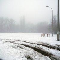Туман :: Виктор Сергеевич Конышев