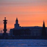 Cегодняшний морозный закат :: Наталья Левина