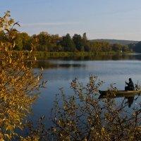 Красивая осень ... :: Ольга Винницкая (Olenka)