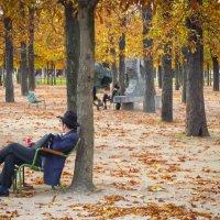 Улицы Парижа :: Евгения Кирильченко
