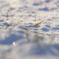 Самоцветы января... :: Александр Филатов