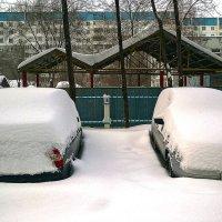 Зима в городе. Ну вот - дождались!!!! (снег нападал за одну ночь) :: Elena Izotova