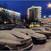 Снегом припорошенные! :: Роланд Дубровский