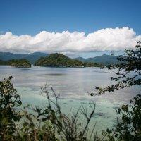 Папуа Новая Гвинея.Природа :: Антонина