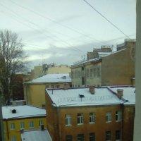 Зимний вид из окна. :: Светлана Калмыкова