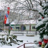 Вот теперь - всё как положено: ёлочка, игрушки, снег в Сочи !!! :: СветЛана D