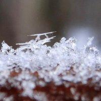 снежинки... :: Валентина. .