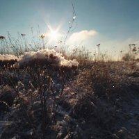 Адагум, 3 января 2016 :: Михаил Тихонов