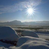 Зима :: Сергей Завьялов