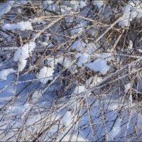 Зимняя пора :: Елена Ерошевич