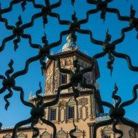 Вид на Петропавловского собора :: Kasatkin Vladislav