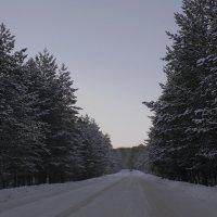 Зимняя дорога в Сибири :: fotovichka репортажный фотохудожник