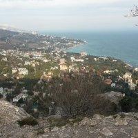 Крым :: Ирина Веснина
