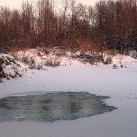 Зима на реке Серёжа. :: Николай Масляев